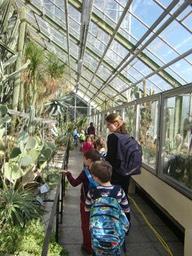 Gewachshauser Und Kunstmuseum Zookindergarten Magdeburg