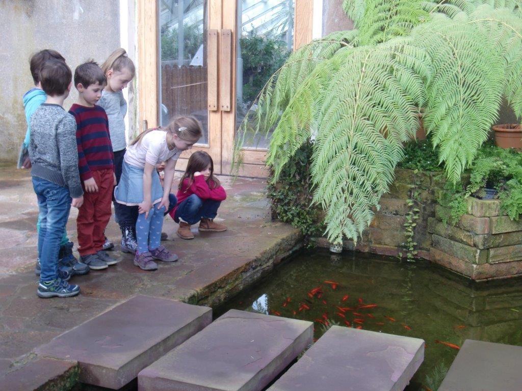 Gruson Gewachshauser 6 Zookindergarten Magdeburg